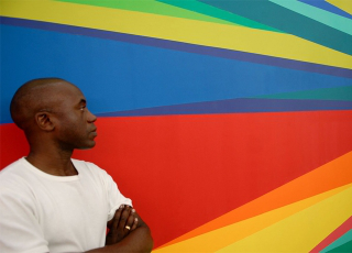 Image of Odili Donald Odita